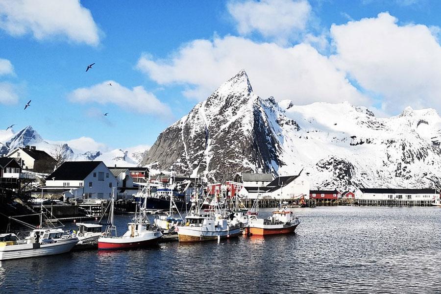 pesca lofoten noruega